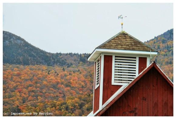Vermont 41